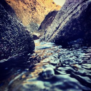 A Guided Meditation – Love's Benevolent Stream